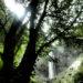 飛騨高山の旅&美食隠れ宿 「奥飛騨湯菜の宿 白雲荘」
