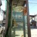 大和郡山・金魚の電話ボックスを見てきました♪